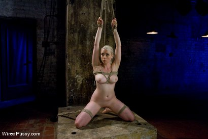 Photo number 5 from Blonde vs. Redhead shot for Wired Pussy on Kink.com. Featuring Sabrina Fox and Lorelei Lee in hardcore BDSM & Fetish porn.