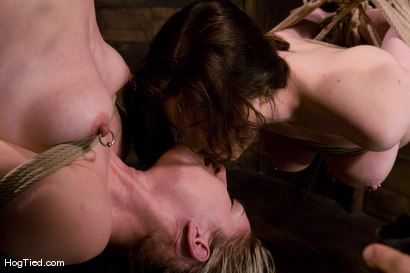 Photo number 14 from Nicotine: First time pussy licker.... shot for Hogtied on Kink.com. Featuring Calico and Nicotine in hardcore BDSM & Fetish porn.