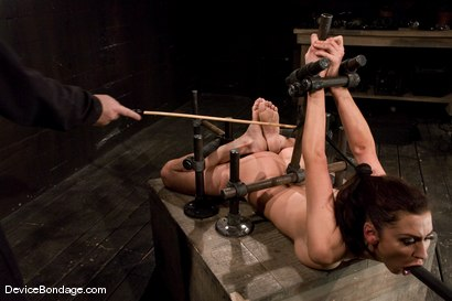 Photo number 14 from Princess Donna<br>Trapped in a hard metal hogtie<br>finger fucked to orgasm shot for Device Bondage on Kink.com. Featuring Princess Donna Dolore in hardcore BDSM & Fetish porn.