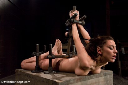 Photo number 6 from Princess Donna<br>Trapped in a hard metal hogtie<br>finger fucked to orgasm shot for Device Bondage on Kink.com. Featuring Princess Donna Dolore in hardcore BDSM & Fetish porn.