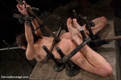 Photo number 7 from Princess Donna<br>Trapped in a hard metal hogtie<br>finger fucked to orgasm shot for Device Bondage on Kink.com. Featuring Princess Donna Dolore in hardcore BDSM & Fetish porn.