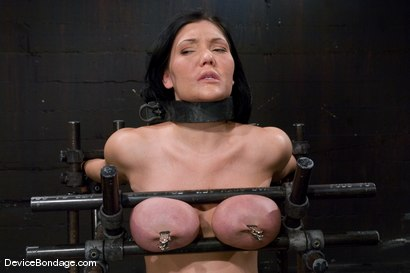 Photo number 6 from Claire Dames<br>  Huge tits brutally bound in metal<br>helpless to stop the pain or pleasure. shot for Device Bondage on Kink.com. Featuring Claire Dames in hardcore BDSM & Fetish porn.