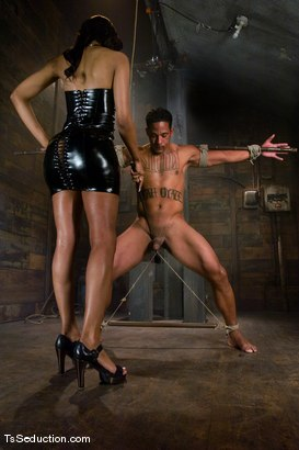 Photo number 2 from Sexy Jade rules Lobo shot for TS Seduction on Kink.com. Featuring Sexy Jade and Lobo in hardcore BDSM & Fetish porn.