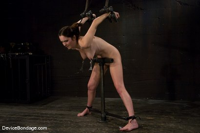Photo number 13 from Winter Sky  Local girl next door trapped in  a brutal metal stappado. shot for Device Bondage on Kink.com. Featuring Winter Sky in hardcore BDSM & Fetish porn.