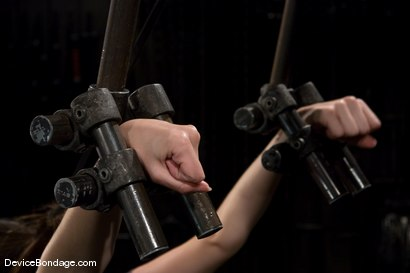 Photo number 3 from Winter Sky  Local girl next door trapped in  a brutal metal stappado. shot for Device Bondage on Kink.com. Featuring Winter Sky in hardcore BDSM & Fetish porn.