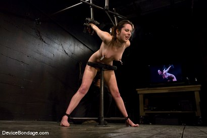 Photo number 7 from Winter Sky  Local girl next door trapped in  a brutal metal stappado. shot for Device Bondage on Kink.com. Featuring Winter Sky in hardcore BDSM & Fetish porn.