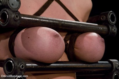 Photo number 7 from Krissy Lynn<br> Hot Californian blond, faces orgasm overload! shot for Device Bondage on Kink.com. Featuring Krissy Lynn in hardcore BDSM & Fetish porn.