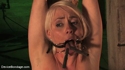 Photo number 8 from Lorelei Lee<br> An exploration shot for Device Bondage on Kink.com. Featuring Lorelei Lee in hardcore BDSM & Fetish porn.