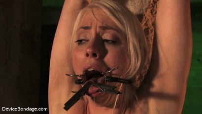 Photo number 11 from Lorelei Lee<br> An exploration shot for Device Bondage on Kink.com. Featuring Lorelei Lee in hardcore BDSM & Fetish porn.