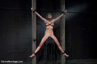 Photo number 1 from Princess Donna <br>World famous Mistress, helpless on the sybian<br>made to cum like a common whore shot for Device Bondage on Kink.com. Featuring Princess Donna Dolore in hardcore BDSM & Fetish porn.