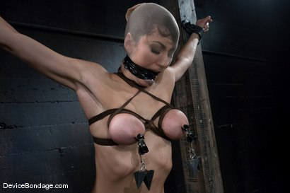 Photo number 12 from Princess Donna <br>World famous Mistress, helpless on the sybian<br>made to cum like a common whore shot for Device Bondage on Kink.com. Featuring Princess Donna Dolore in hardcore BDSM & Fetish porn.