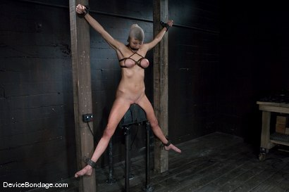 Photo number 13 from Princess Donna <br>World famous Mistress, helpless on the sybian<br>made to cum like a common whore shot for Device Bondage on Kink.com. Featuring Princess Donna Dolore in hardcore BDSM & Fetish porn.