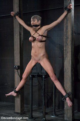 Photo number 14 from Princess Donna <br>World famous Mistress, helpless on the sybian<br>made to cum like a common whore shot for Device Bondage on Kink.com. Featuring Princess Donna Dolore in hardcore BDSM & Fetish porn.