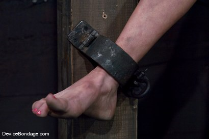 Photo number 3 from Princess Donna <br>World famous Mistress, helpless on the sybian<br>made to cum like a common whore shot for Device Bondage on Kink.com. Featuring Princess Donna Dolore in hardcore BDSM & Fetish porn.