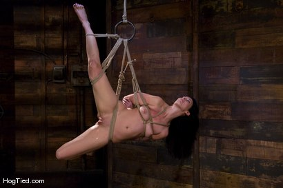 Photo number 14 from January Seraph: HOT Domme submits to my rope & fucking shot for Hogtied on Kink.com. Featuring January Seraph in hardcore BDSM & Fetish porn.