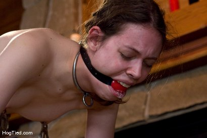 Photo number 14 from Exiled From Dick Mountain, pt 5...  The finale shot for Hogtied on Kink.com. Featuring Nina, Dia Zerva, Kristine and Amber Keen in hardcore BDSM & Fetish porn.