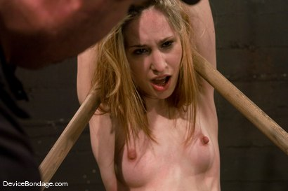 Photo number 13 from Calico   Orgasm overload, for our Spring Breaker. shot for Device Bondage on Kink.com. Featuring Calico in hardcore BDSM & Fetish porn.