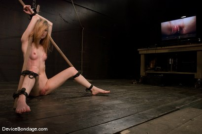 Photo number 10 from Calico<br> Orgasm overload, for our Spring Breaker. shot for Device Bondage on Kink.com. Featuring Calico in hardcore BDSM & Fetish porn.