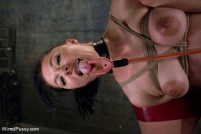 Photo number 8 from Maggie Mayhem is suspended and fucked with an electric dildo! shot for Wired Pussy on Kink.com. Featuring Sabrina Fox and Maggie Mayhem in hardcore BDSM & Fetish porn.