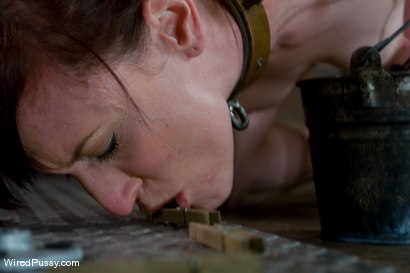 Photo number 7 from Nina Returns shot for Wired Pussy on Kink.com. Featuring Maitresse Madeline Marlowe  and Nina in hardcore BDSM & Fetish porn.