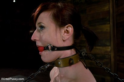 Photo number 8 from Nina Returns shot for Wired Pussy on Kink.com. Featuring Maitresse Madeline Marlowe  and Nina in hardcore BDSM & Fetish porn.