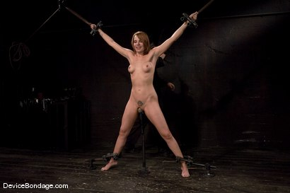Photo number 2 from Dana DeArmond<br>Spread, stuffed, and vibrated.<br>Stretched out on toes and made to cum! shot for Device Bondage on Kink.com. Featuring Dana DeArmond in hardcore BDSM & Fetish porn.