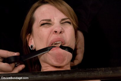 "Photo number 8 from Dana DeArmond<br>Trapped in the ultimate of ""fuck me""<br>positions and drilled in the ass! shot for Device Bondage on Kink.com. Featuring Maestro and Dana DeArmond in hardcore BDSM & Fetish porn."
