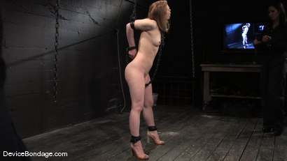 Photo number 5 from Madison, Sindee Jennings and Isis Love<br>Part 1 of 4 of the April live feed. shot for Device Bondage on Kink.com. Featuring Madison Young, Isis Love and Sindee Jennings in hardcore BDSM & Fetish porn.