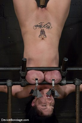 Photo number 10 from Claire Dames<br>Her huge tits are a curse and a blessing shot for Device Bondage on Kink.com. Featuring Claire Dames in hardcore BDSM & Fetish porn.