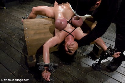 Photo number 8 from Claire Dames<br>Her huge tits, brutally bound and oiled. <br>Her body spread and tortured.<br> shot for Device Bondage on Kink.com. Featuring Claire Dames in hardcore BDSM & Fetish porn.