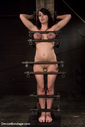 Photo number 1 from Beverly Hills<br> Captured in a handmade, custom fitted, <br>device that pins her to a beam. shot for Device Bondage on Kink.com. Featuring Beverly Hills in hardcore BDSM & Fetish porn.
