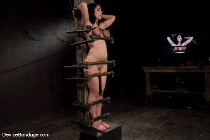 Photo number 5 from Beverly Hills<br> Captured in a handmade, custom fitted, <br>device that pins her to a beam. shot for Device Bondage on Kink.com. Featuring Beverly Hills in hardcore BDSM & Fetish porn.