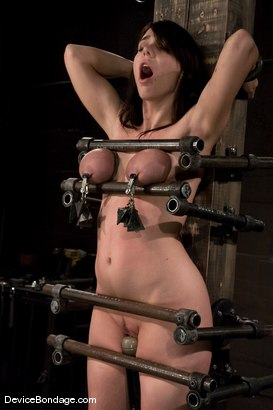 Photo number 11 from Beverly Hills<br> Captured in a handmade, custom fitted, <br>device that pins her to a beam. shot for Device Bondage on Kink.com. Featuring Beverly Hills in hardcore BDSM & Fetish porn.