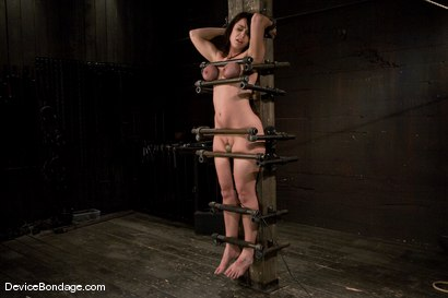 Photo number 14 from Beverly Hills<br> Captured in a handmade, custom fitted, <br>device that pins her to a beam. shot for Device Bondage on Kink.com. Featuring Beverly Hills in hardcore BDSM & Fetish porn.