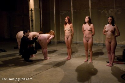 Photo number 3 from The Auditions Part One shot for The Training Of O on Kink.com. Featuring Maestro, Nerine Mechanique, Bella Rossi, Cherry Torn, Sasha Lexing, Sarah Shevon, Maggie Mayhem, Savannah West and Peter in hardcore BDSM & Fetish porn.