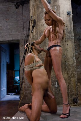 Photo number 9 from Cheating on a 9 inch cock <br> Vanilla and Pancho shot for TS Seduction on Kink.com. Featuring Vanilla and Pancho Santos in hardcore BDSM & Fetish porn.