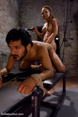 Photo number 10 from Cheating on a 9 inch cock <br> Vanilla and Pancho shot for TS Seduction on Kink.com. Featuring Vanilla and Pancho Santos in hardcore BDSM & Fetish porn.