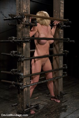 Photo number 1 from Krissy Lynn<br> Big titted, blond, trapped in the big squeeze. shot for Device Bondage on Kink.com. Featuring Krissy Lynn in hardcore BDSM & Fetish porn.