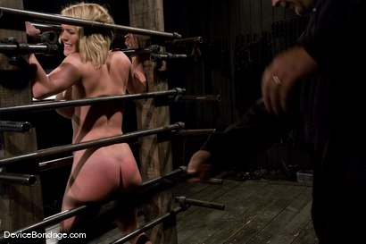 Photo number 12 from Krissy Lynn<br> Big titted, blond, trapped in the big squeeze. shot for Device Bondage on Kink.com. Featuring Krissy Lynn in hardcore BDSM & Fetish porn.