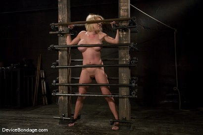 Photo number 13 from Krissy Lynn<br> Big titted, blond, trapped in the big squeeze. shot for Device Bondage on Kink.com. Featuring Krissy Lynn in hardcore BDSM & Fetish porn.