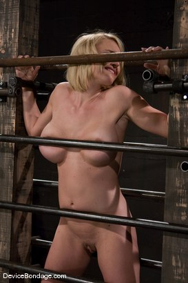 Photo number 3 from Krissy Lynn<br> Big titted, blond, trapped in the big squeeze. shot for Device Bondage on Kink.com. Featuring Krissy Lynn in hardcore BDSM & Fetish porn.