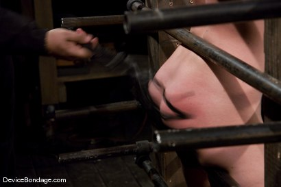 Photo number 6 from Krissy Lynn<br> Big titted, blond, trapped in the big squeeze. shot for Device Bondage on Kink.com. Featuring Krissy Lynn in hardcore BDSM & Fetish porn.