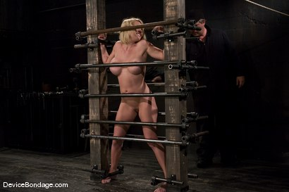 Photo number 7 from Krissy Lynn<br> Big titted, blond, trapped in the big squeeze. shot for Device Bondage on Kink.com. Featuring Krissy Lynn in hardcore BDSM & Fetish porn.