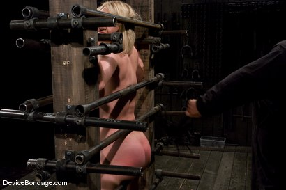 Photo number 8 from Krissy Lynn<br> Big titted, blond, trapped in the big squeeze. shot for Device Bondage on Kink.com. Featuring Krissy Lynn in hardcore BDSM & Fetish porn.