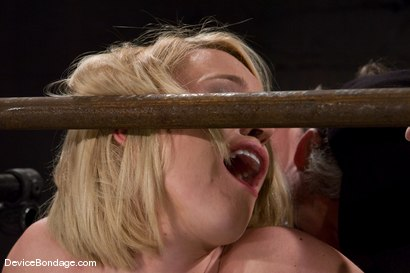 Photo number 9 from Krissy Lynn<br> Big titted, blond, trapped in the big squeeze. shot for Device Bondage on Kink.com. Featuring Krissy Lynn in hardcore BDSM & Fetish porn.