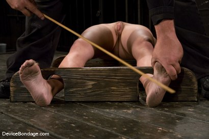 Photo number 13 from Krissy Lynn<br> Hot Californian blond, suffers her first foot torture. shot for Device Bondage on Kink.com. Featuring Krissy Lynn in hardcore BDSM & Fetish porn.