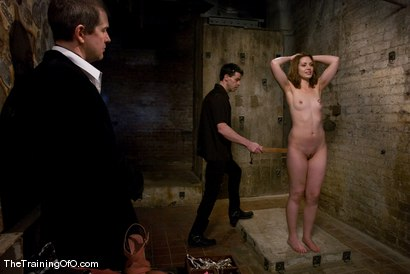 Photo number 3 from Slave Hunting<br />Candidate #37 shot for The Training Of O on Kink.com. Featuring Sarah Shevon and Maestro in hardcore BDSM & Fetish porn.