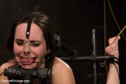 Photo number 10 from Winter Sky   Device Bondage   Making the cute girls prettier since 2007 shot for Device Bondage on Kink.com. Featuring Winter Sky in hardcore BDSM & Fetish porn.