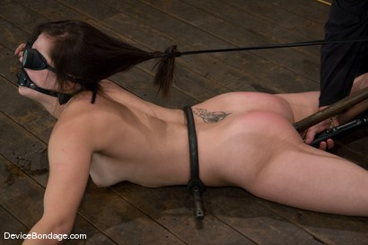 Photo number 12 from Bobbi Starr<br>Anal Intrusion shot for Device Bondage on Kink.com. Featuring Bobbi Starr in hardcore BDSM & Fetish porn.