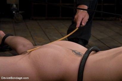 Photo number 14 from Bobbi Starr<br>Anal Intrusion shot for Device Bondage on Kink.com. Featuring Bobbi Starr in hardcore BDSM & Fetish porn.